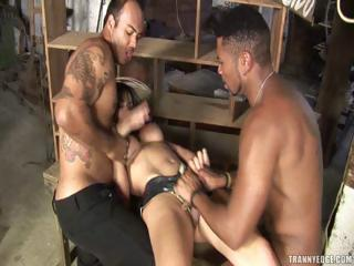 Rough Sex Receiver Banged